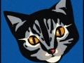 cat_mat_01p