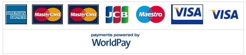 logo mat payment